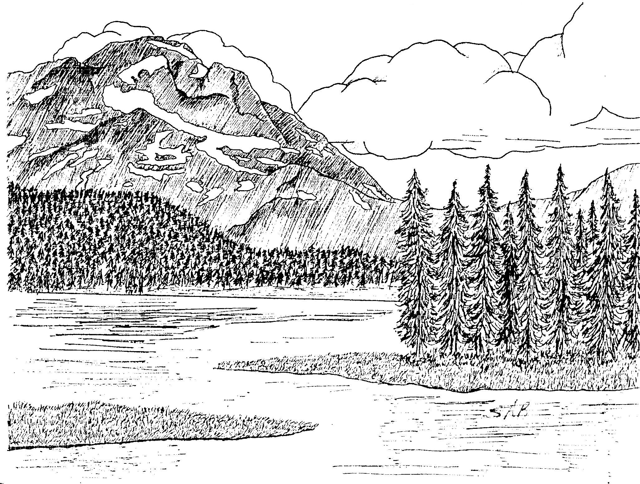 Landscapes In Pen And Ink