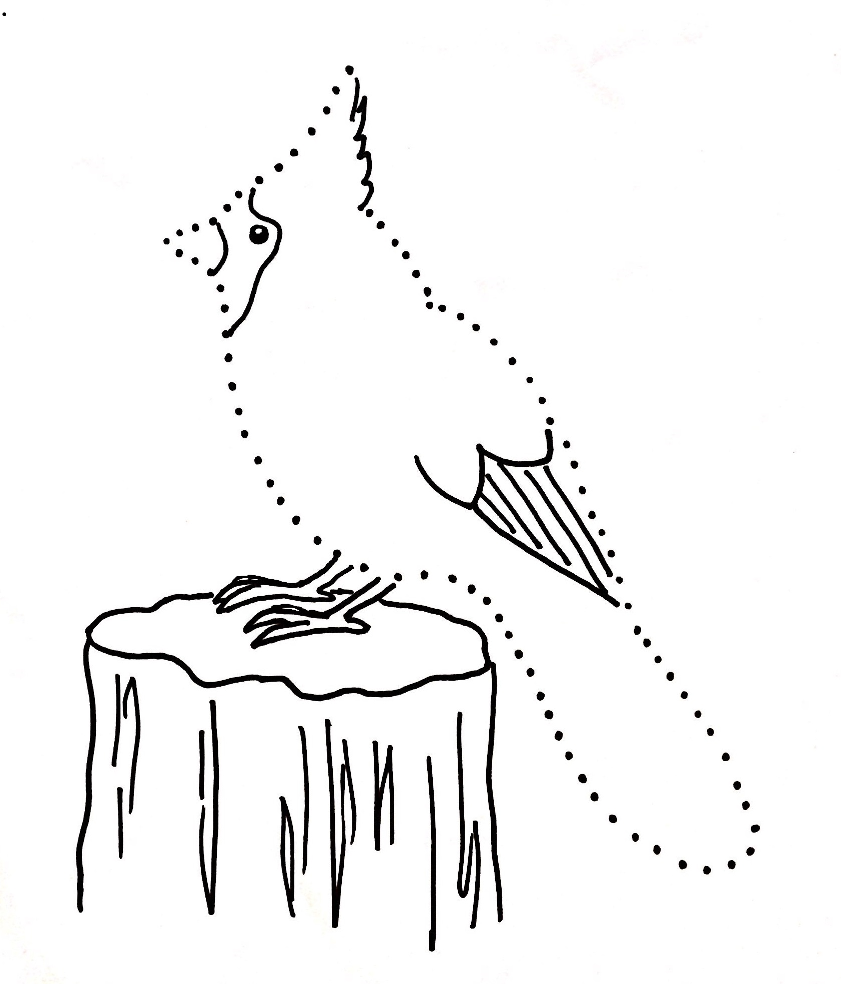 Dot Drawings