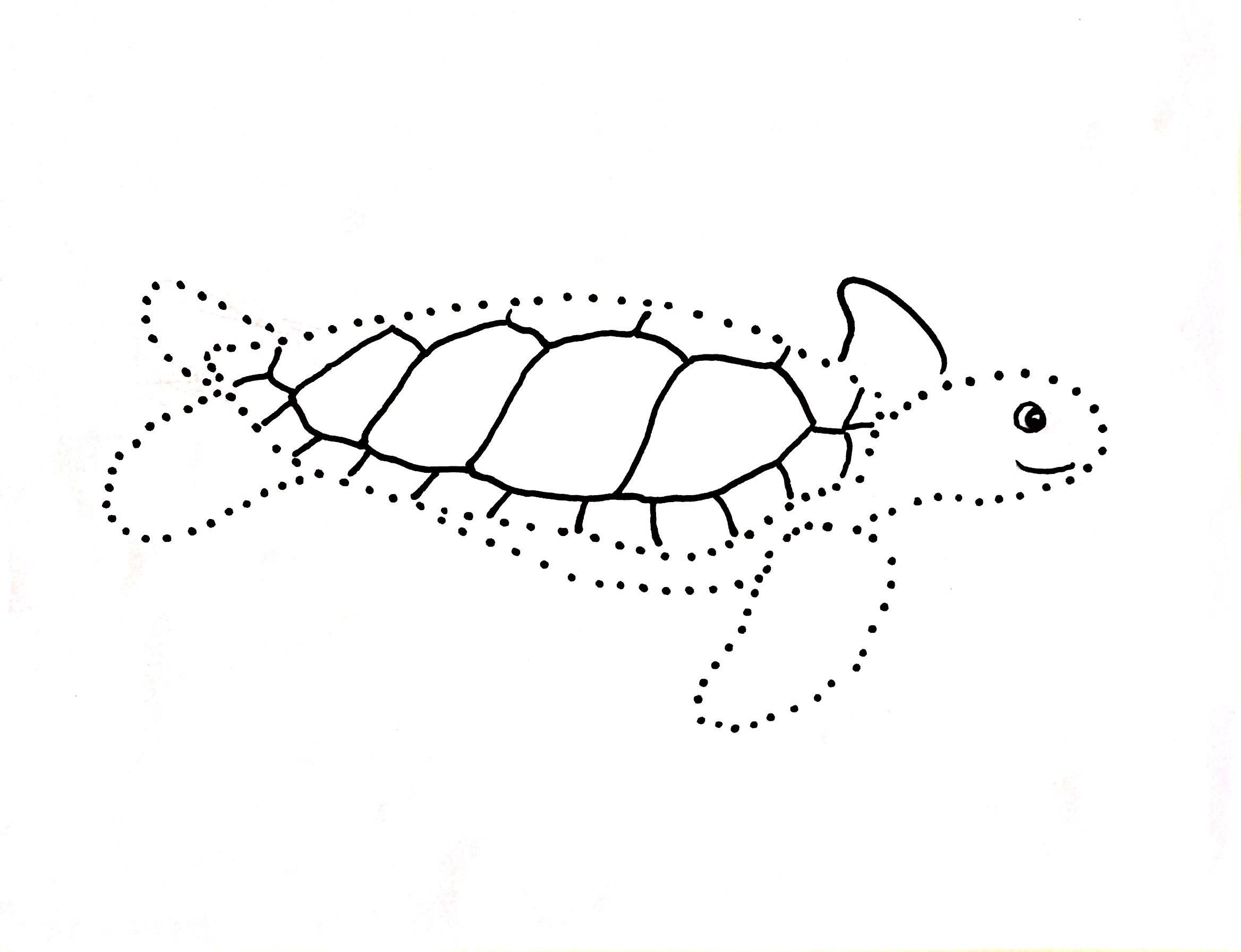 Sea Turtle Dot Drawing