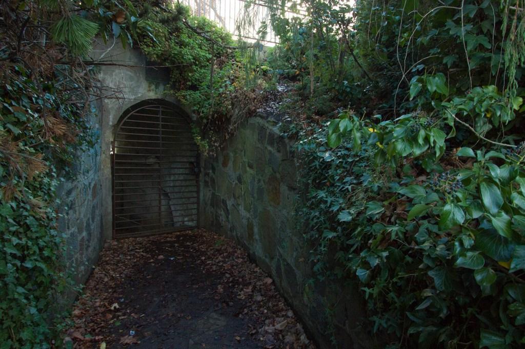Subterranean magazine below Princes Park