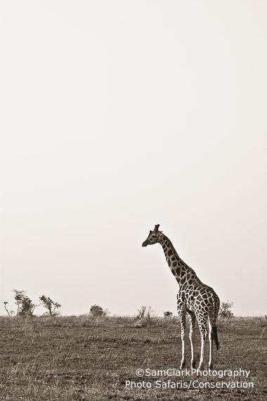 GQEU 2014-03 Uganda