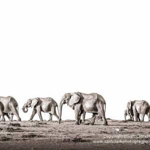 EMMK 2015-05 Kenya
