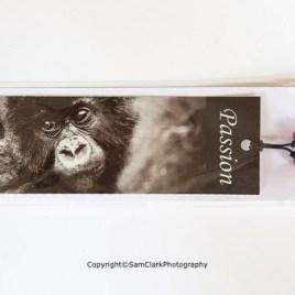 Gorilla – Passion
