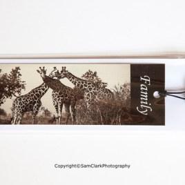 Giraffe – Family