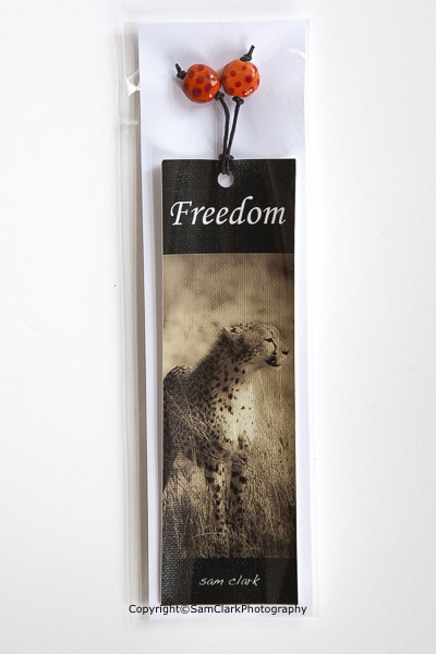 Cheetah – Freedom