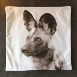 Wild Dog Cover