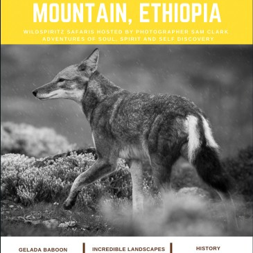 MOUNTAIN TO MOUNTAIN, ETHIOPIA SEPTEMBER 2020