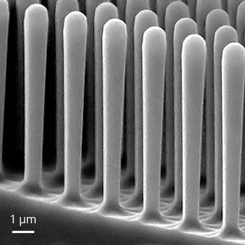 GaAs nanopillar