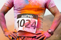 Colour and Music Fest and Run