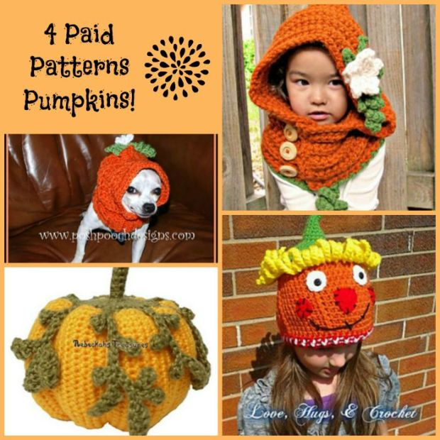 Paid Pattern Pumpkin Collage