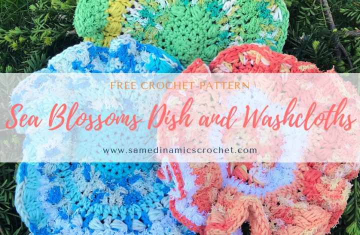 How to Crochet a Dishcloth and Washcloth Free Crochet Pattern
