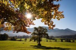 Herbst in Samerberger Filze