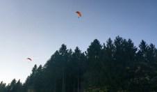 1Tandem-Flieger Wald