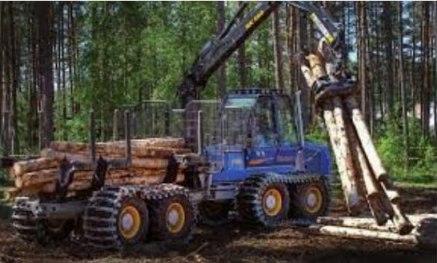 Forstbetrieb