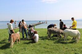 Spaziergänge mit Eseln und Ponys zum Chiemsee gehören zu den Freizeitaktivitäten am Irmengard-Hof der Björn Schulz Stiftung. Foto: Björn Schulz Stiftung
