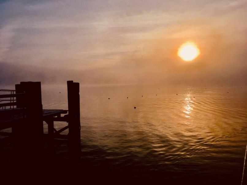 Nebelstimmung (4)