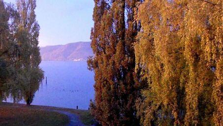 Bodensee Herbstlich