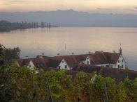 herbstlicher Bodensee von Kloster Birnau aus