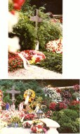 Scan_20200801_224701