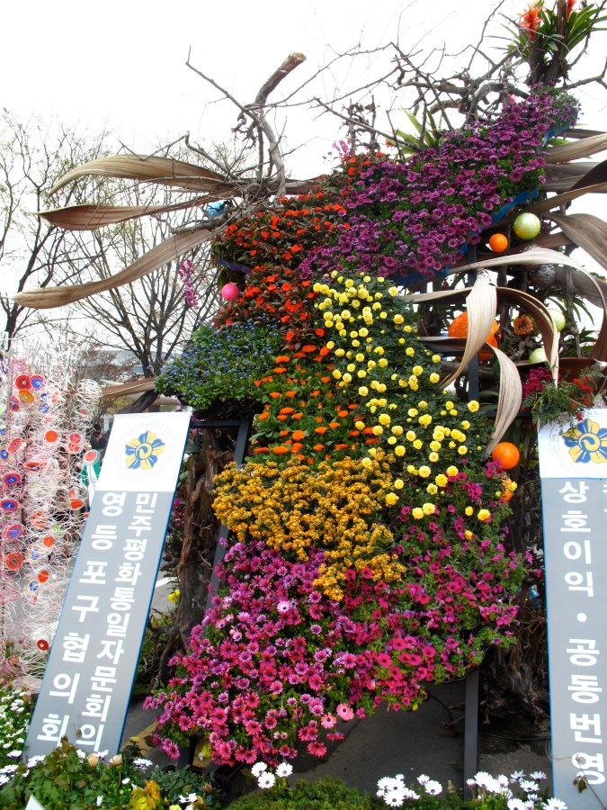 United Korea - made out of blooms (Cherry Blossom Festival display)