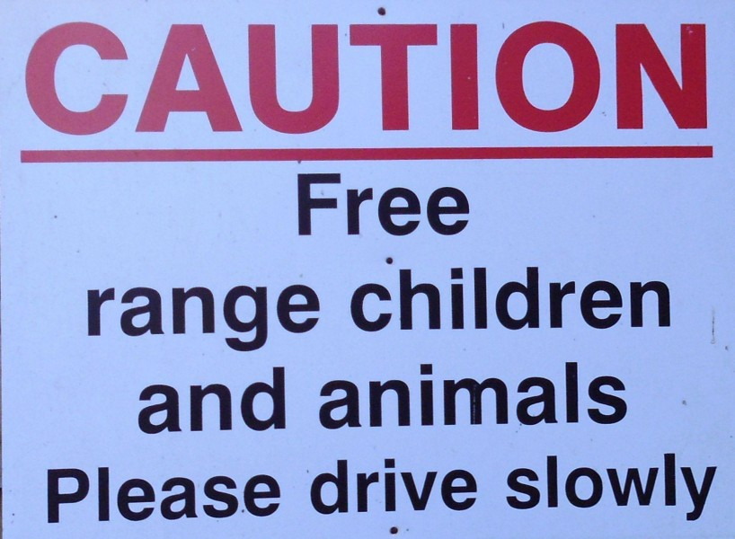 Mind Your Own Business, Free Range Busybodies