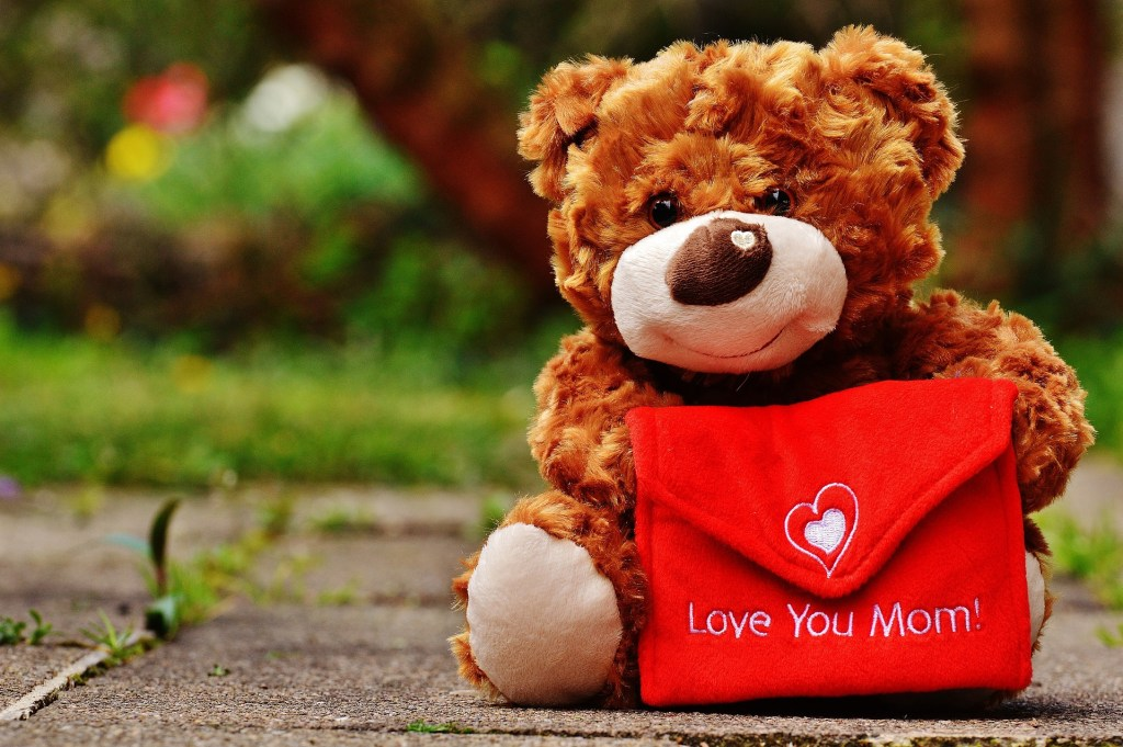 teddy-1338925_1920