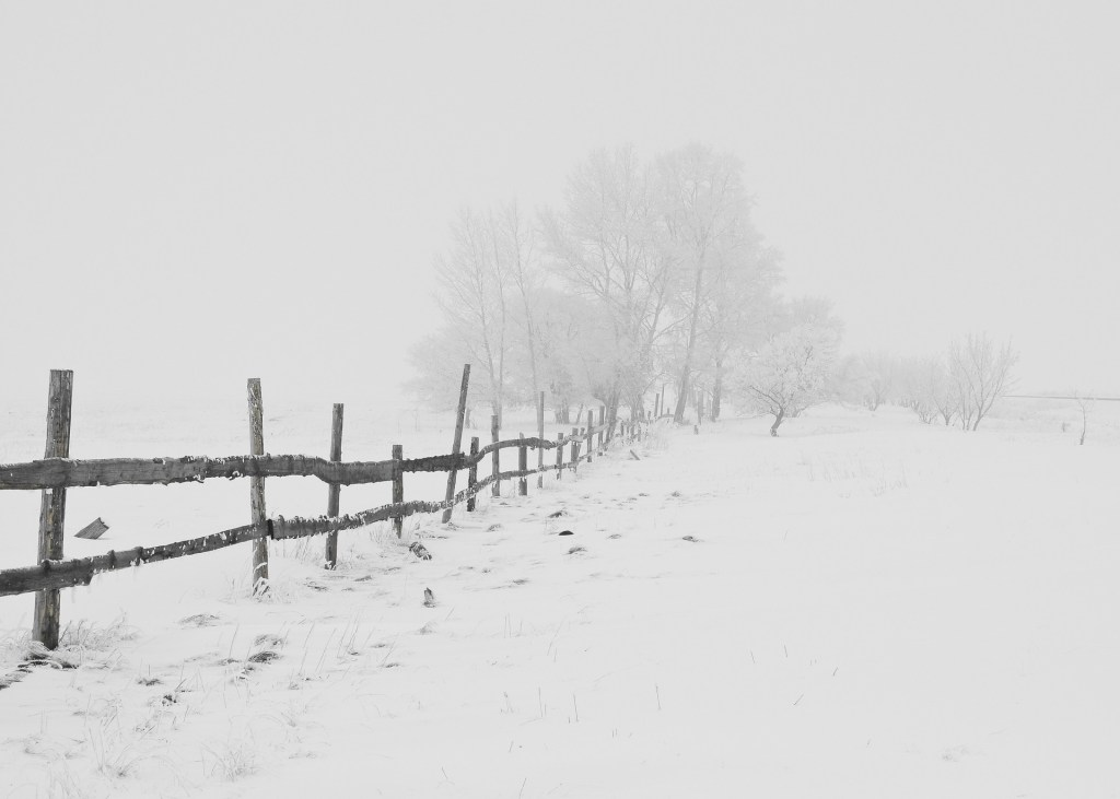 Hate the Cold? Stay Out of These Top 5 Worst Winter States Until Spring