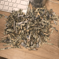 2 YO Shreds $1,060 of Parents' Money in Case You're Thinking of Having Kids