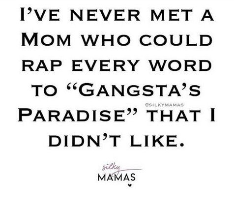 Funny memes from moms on the internet who love their 90s and 2000's hip hop and rap songs Silky Mamas Sammiches and Psych Meds