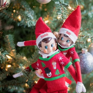 Parents, why do we do this to ourselves? Wasn't Santa enough? Then wasn't Santa + the Elf on the Shelf enough? Now he has clothes and his own pet? WTF is wrong with us?