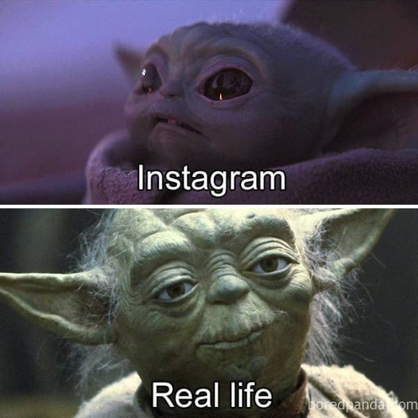18 Baby Yoda Memes to Make Your Day More Adorable