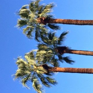 Travel Guide: Palm Springs, California