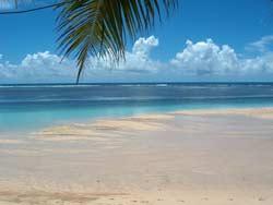 Tan Beach Fales Beach Area
