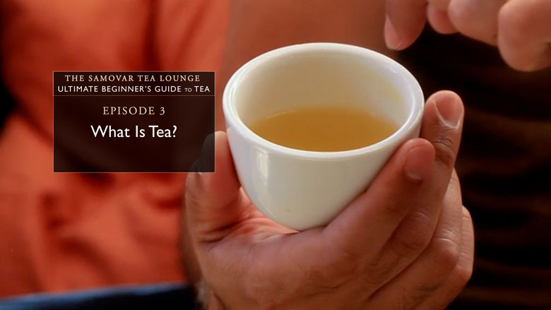 3. What Is Tea?