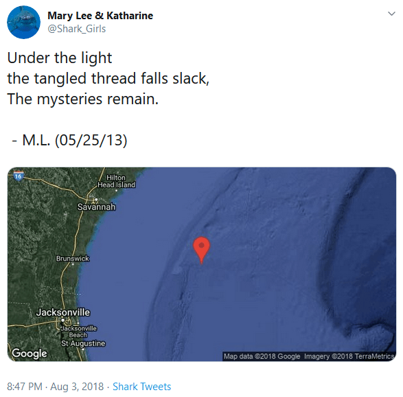 "Screenshot of the Twitter @shark_girls account, with the tweet reading ""Under the light / the tangled thread falls slack, / The mysteries remain"""