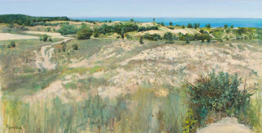 West Beach (Indiana Dunes), 42 X 84
