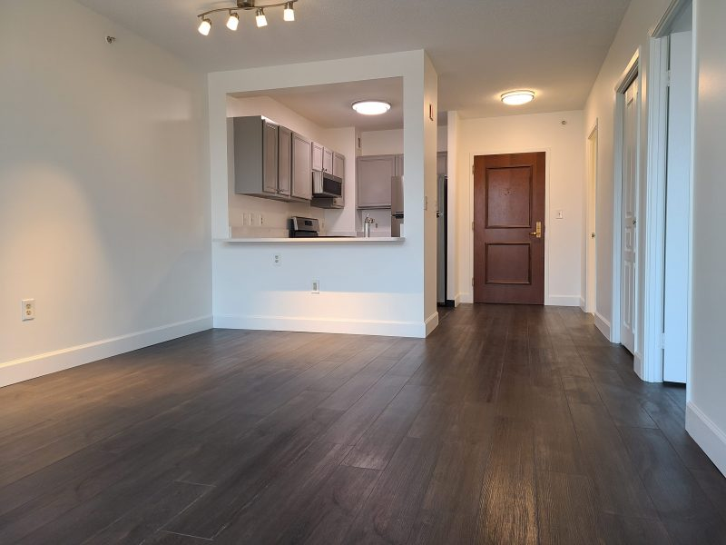 AVAILABLE!   Newly Renovated 1 bed/1 bath Condo. Utilities and Assigned Underground Parking included!