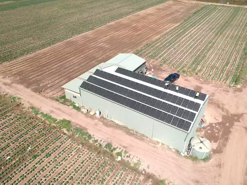 Sams Solar Power Installation Projects - Xerri Growers Glossodia 1