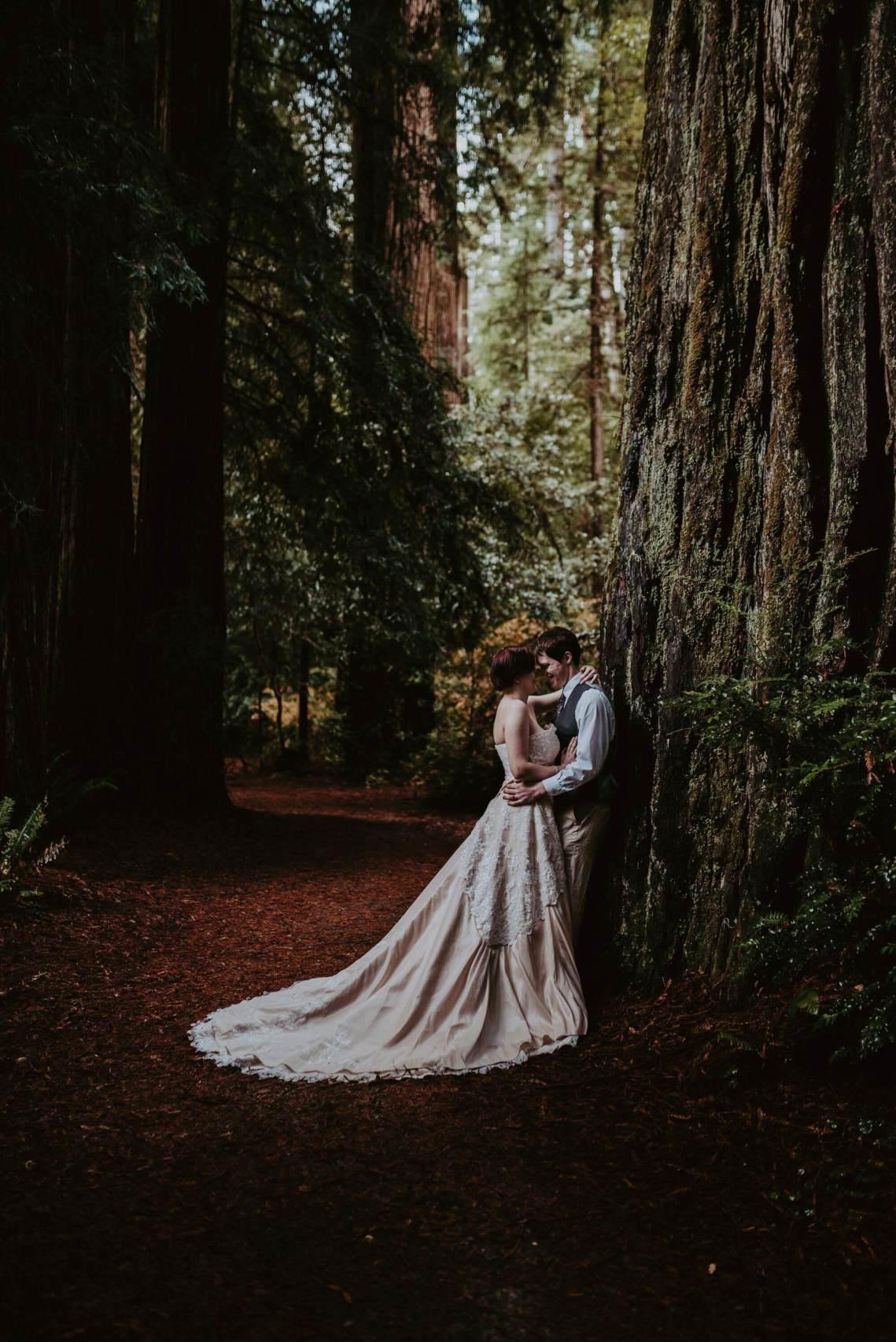 S Photography Pacific Northwest Adventure Photographer - California Redwoods Elopement