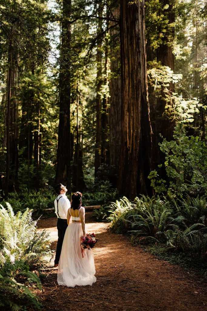 Jedediah Smith Redwoods Adventure Elopement