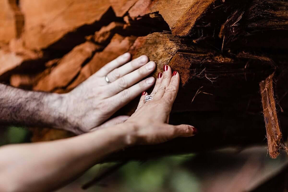 Allison-Brooks-Jedediah-Smiith-Redwoods-Adventure-Elopement-Wedding-S-Photography-Blog_0044.jpg