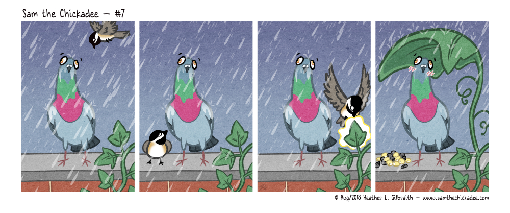 A pigeon stands in the rain on a rock wall. Sam the Chickadee flies by, and sees them, then stops. Sam flies over to an ivy leaf on the rock wall and uses his magic; he transforms it into a giant leaf umbrella for the pigeon, and also leaves some corn and sunflower seeds for them. The pigeon blushes.