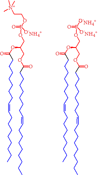 Dr samuel furse the lipid chronicles figure 2 the structures of pe left and pa right the blue regions represent the lipophilic part of the lipids with the red portions representing the malvernweather Choice Image
