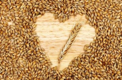 Barley Real Green Supplement Powder