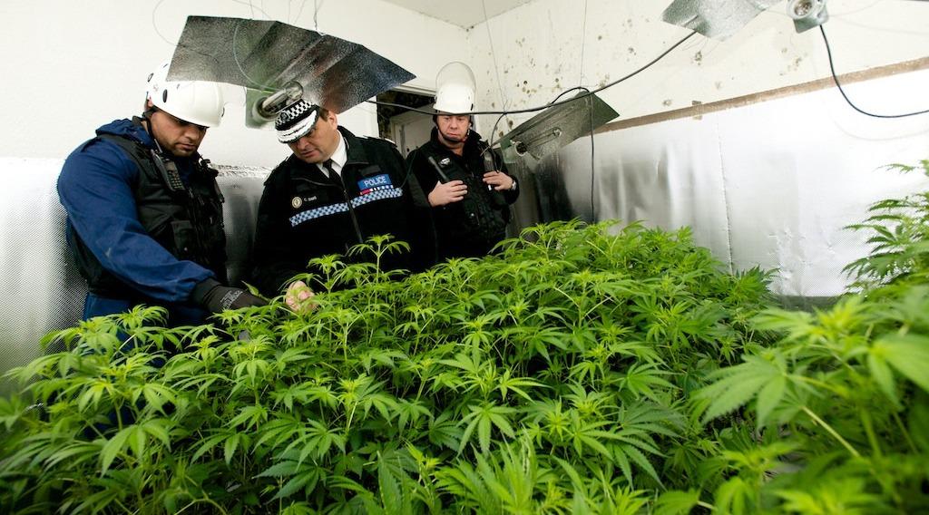 Mike Barton war on drugs