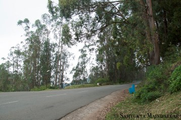 A blue bench sits by the roadside, a picturesque spot for a break if you decide to explore the hills on foot