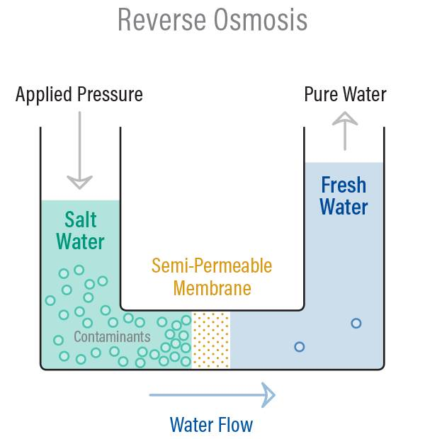 Ever wish you could learn by osmosis? Sana Store Reverse Osmosis Marlus 650 Pump