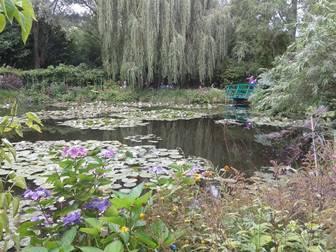 Yeşilliklerin ve çiçeklerin içinde Monet'in cennetini bulacaksınız.