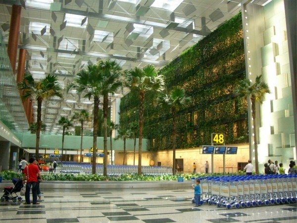 Changi Havaalanı-Singapur
