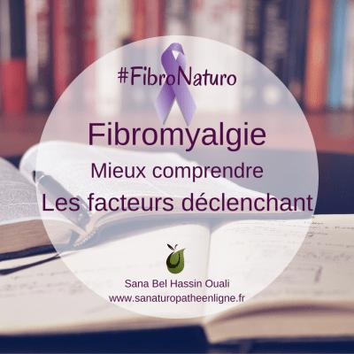 les facteurs déclenchant de la fibromyalgie naturopathie